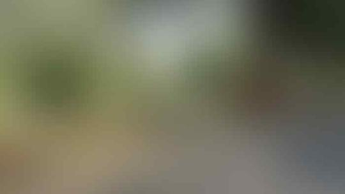 Guru TK dan Pria Beristri di Probolinggo Akhiri Cinta Terlarang dengan Mesum