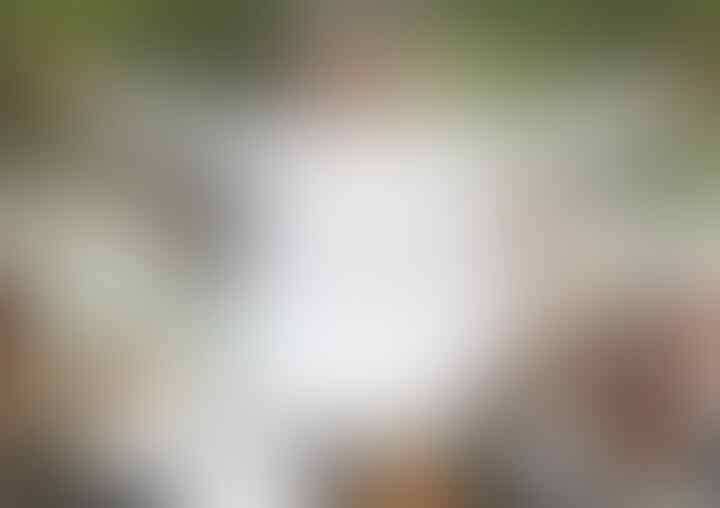 Logo HUT RI ke-75 Mirip Salib, Tengku Zul: Umat Mayoritas Mau Digilas?