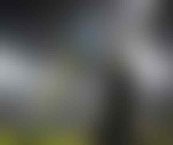 Inter Milan, Berjuanglah !!!