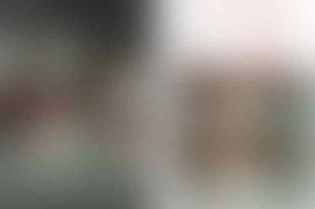 Foto Penusuk Syekh Ali Diedit Lagi Megang Bendera Tauhid dan Disebarkan Para Buzzer