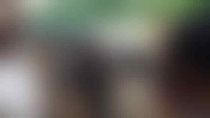 5 Fakta Gempar Kabar Mahasiswi Diperkosa Bergilir di Makassar