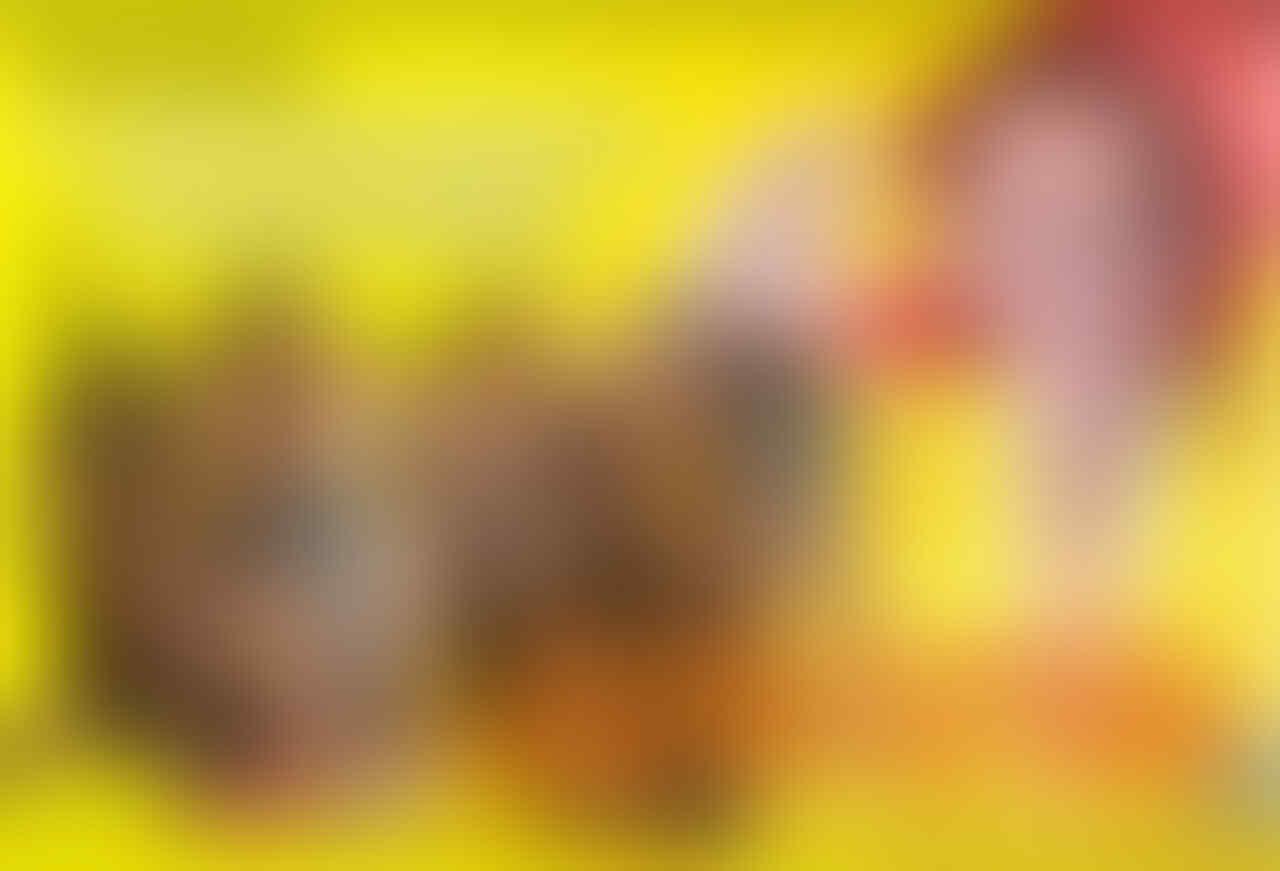 Colek Sri Mulyani, Basuki Minta Rp 1,5 T Buat Ganti Rugi Lumpur Lapindo