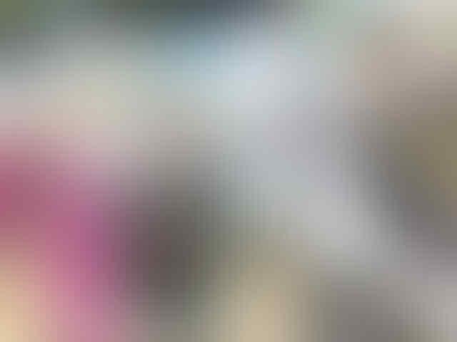 Ini Tampang Brigadir DY Polisi Tersangka Pemeerkosaan Anak di Bawah Umur
