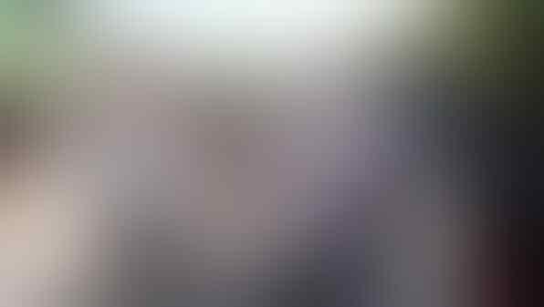 BREAKING NEWS - AC Milan Konfirmasi Zlatan Ibrahimovic Positif Covid-19