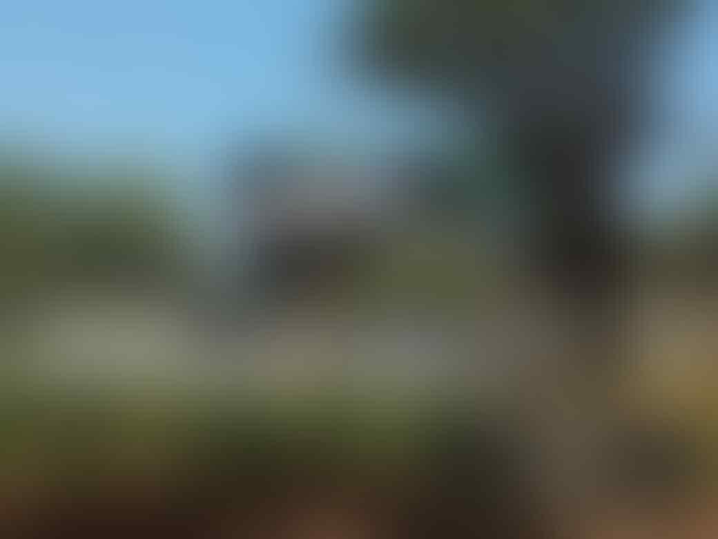 [COC Reg. Semarang] Destinasi Wisata Semarang, Bikin Terbayang Sekaligus Terkenang