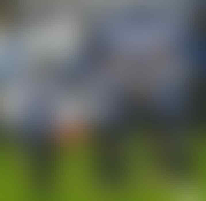 Kabut Hitam Melanda Sepakbola Sheffield