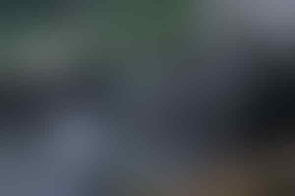 [COC Reg. Mojokerto] Wisata Petirtaan Jolotundo, Airnya Terbaik Kedua di Dunia!