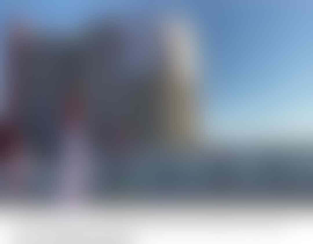 Presiden Joko Widodo Jadi Nama Jalan di Abu Dhabi, UEA