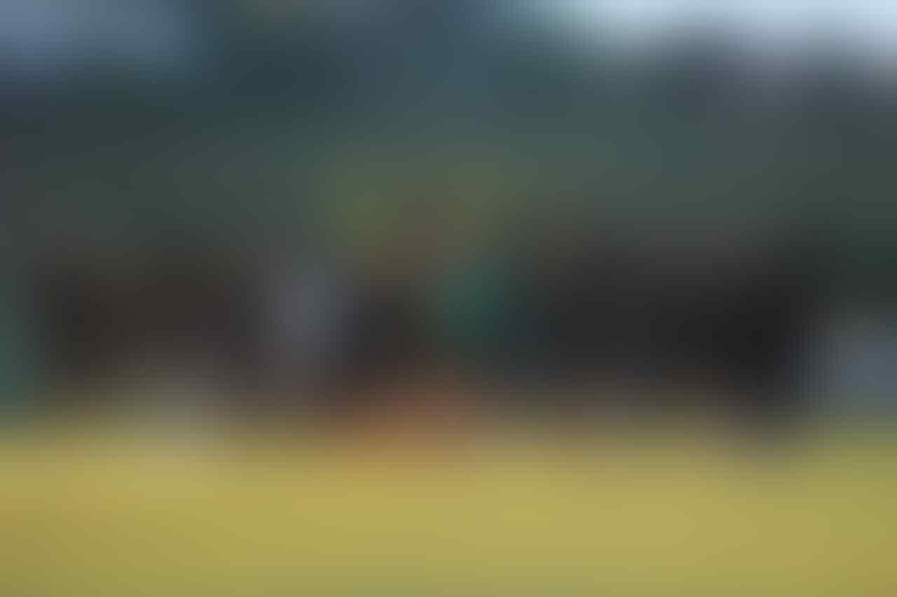 Awalnya Jadi Lumbung Gol, Inilah Hasil Lengkap Uji Coba Timnas U-19 di Kroasia