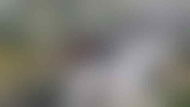 Massa FPI Bikin Macet Bandara, Curhat Penumpang Ketinggalan Pesawat