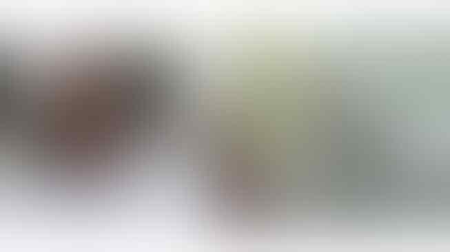 Buset Bapak Ini Mirip Banget Menteri Luhut, Netizen: Pak Luhut Versi Ojol