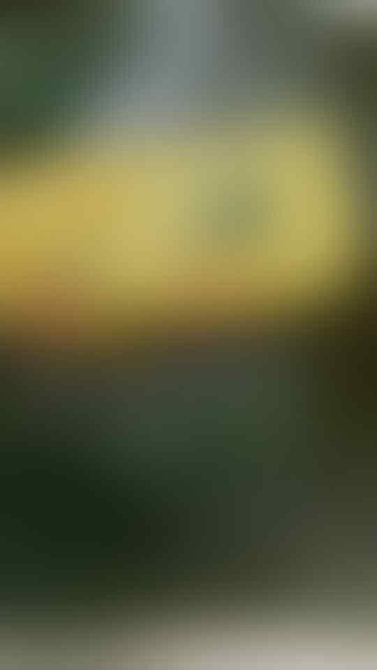 Yuk! Cicipi Uniknya Citarasa Pelas Hurang Khas Cianjur Selatan
