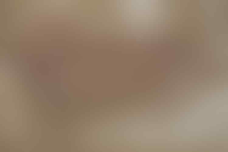 Diakui Ahli Luar Negeri! Lukisan Gua Tertua di Dunia Ternyata Berada di Indonesia