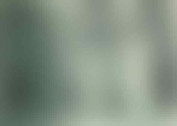 Jim Thorpe : Sang Jawara Olimpiade Tanpa Medali