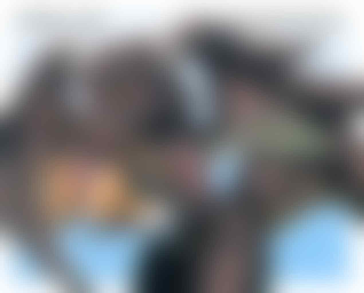 [ULASAN] Monster Hunter Rise, Hadir Kembali Dengan Grafik Halus Tanpa Gangguan