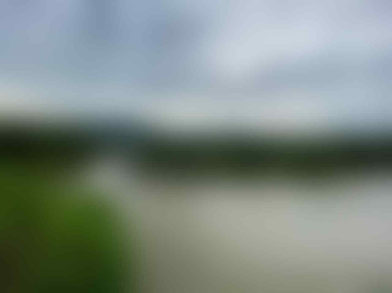 Ladon Paradise : Spot Photo dengan Pesona Sawah, Sungai Progo, dan Bukit Menoreh