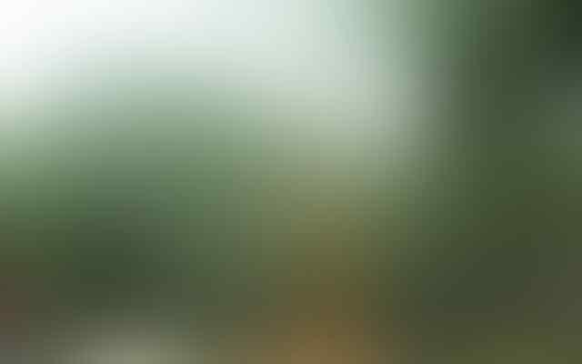 Ajak Pasanganmu ke TAMAN GUNUNG SARI Singkawang! bisa foto mesra di Jembatan Selfie..