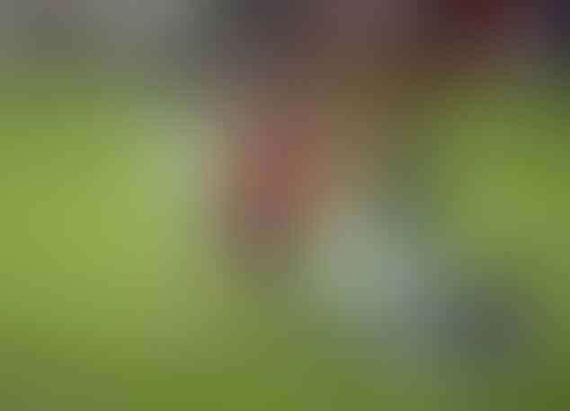 Sven Botman diincar Tottenham, Liverpool, dan Inter Milan