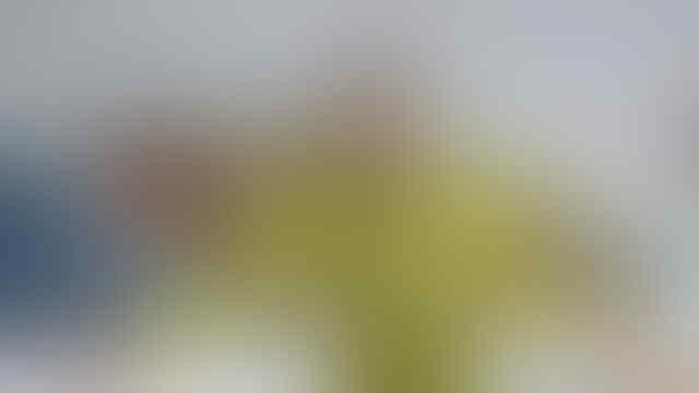 Setelah Memilih Bermain di Turki, Mesut Ozil Tinggal Nunggu Tenggelam?