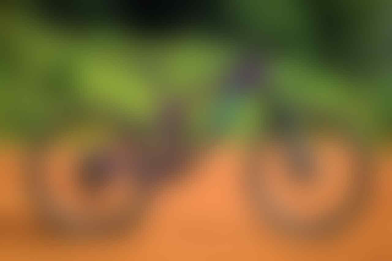 Sepeda Gunung pilihan terbaik untuk menjelajah Kota Bekasi