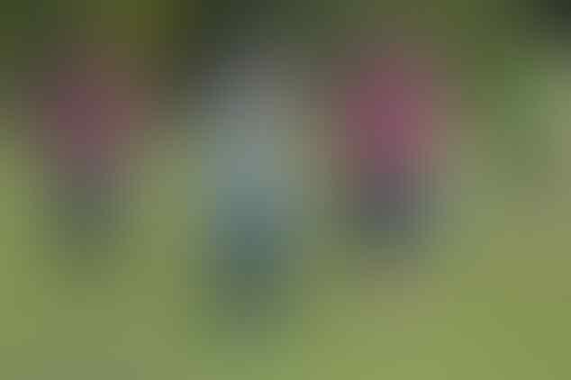 Sebelum tinggalkan Chelsea, Kevin De Bruyne ungkap perbincangannya dengan Mourinho