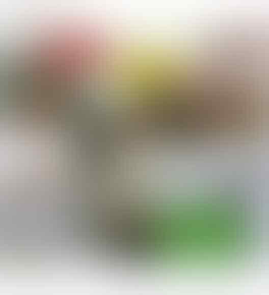 Peserta KLB Marah Tak Dapat Uang Sesuai Janji, Nazaruddin Tombokin Rp 5 Juta