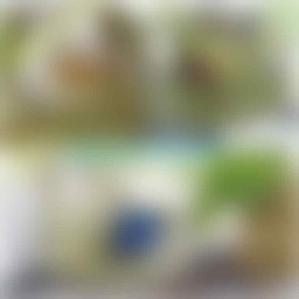 Community Challenge Waktunya Cupang Mekar Mampang