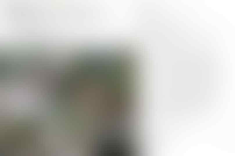 Viral, Cewek Pemburu Pamer Hasil Buruan Burung Dilindungi di Kerinci