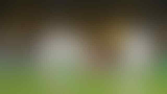 Pemain yang paling banyak dapat gelar man of the match di Euro