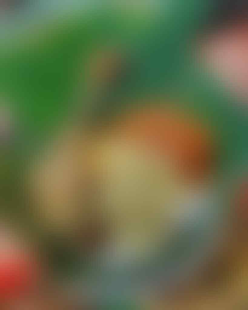 10 Warung Nasi Ayam Paling Enak Di Semarang Ini Membuat Kangen Pulang Kampung!
