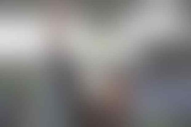 Reshuffle Kabinet Kian Dekat, Moeldoko akan Diganti Doni Monardo