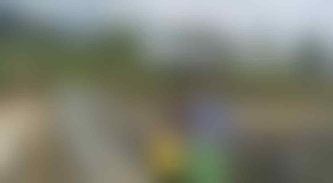 Pesona Embung Walitis di Kaki Gunung Sumbing