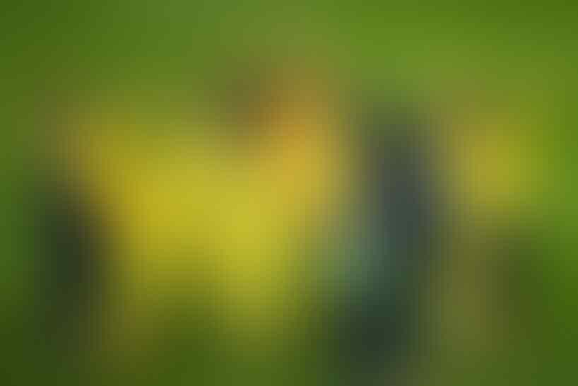 Catatan Unik dari Villarreal, Musuh Manchester United di Final Liga Europa
