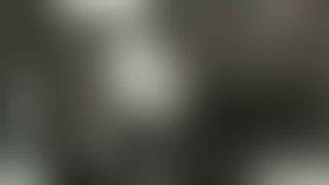 Habib Abdul Qadir: Ceramah di Gereja Bukan Dakwah, tapi Hina Islam di Depan Kafir!