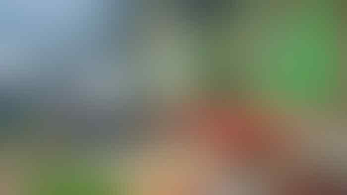 Anies Tolak Bumbu Rendang Pemberian Pedagang diPs Kopro karena Takut Diperiksa KPK