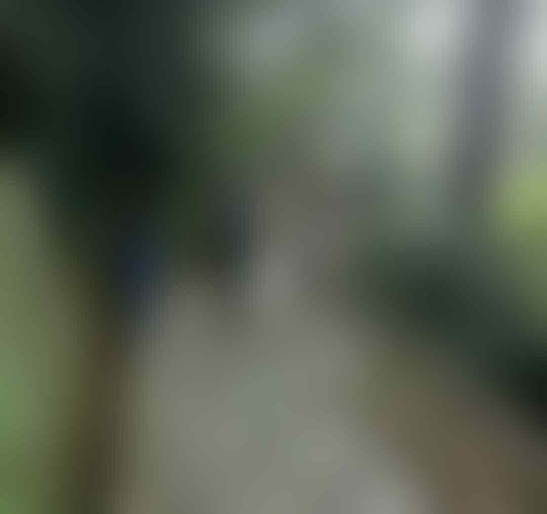 Air Terjun Seribu Tangga Nan Eksotis, Grojogan Sewu Tawangmangu