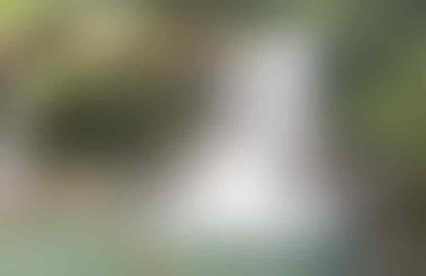 Berkunjung ke Curug Thitang, Air Terjun Asri yang Tersembunyi