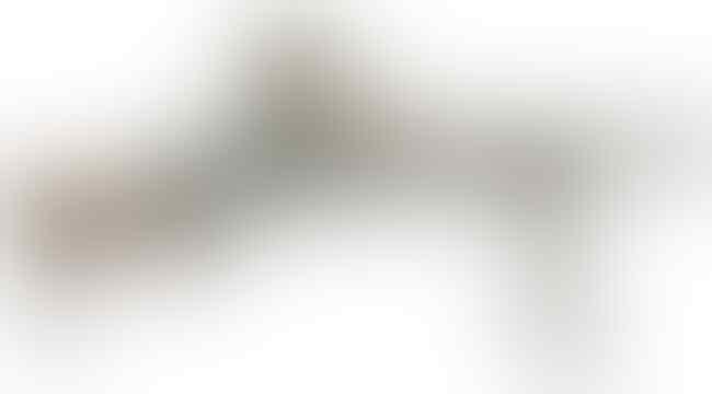 10 Jenis Senapan Mesin TNI & Polri 2021