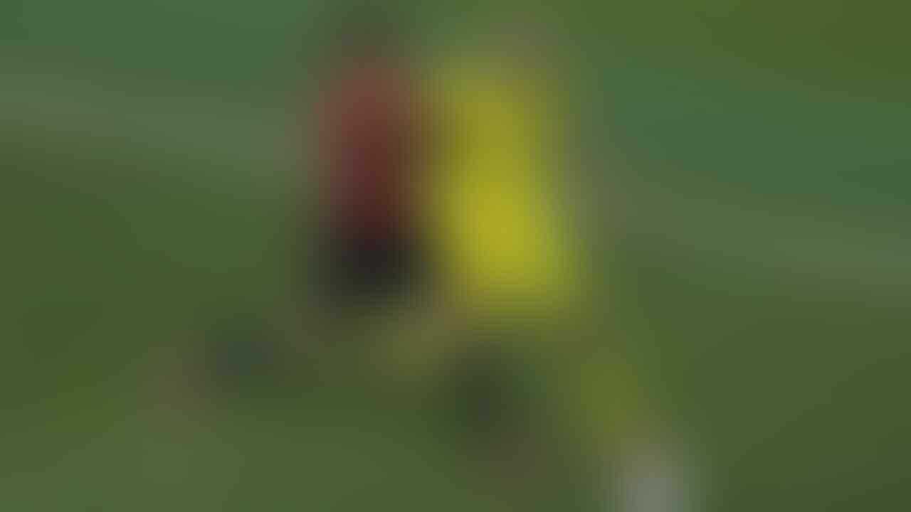 Saat Alvaro Morata 'Mewernerkan Diri'
