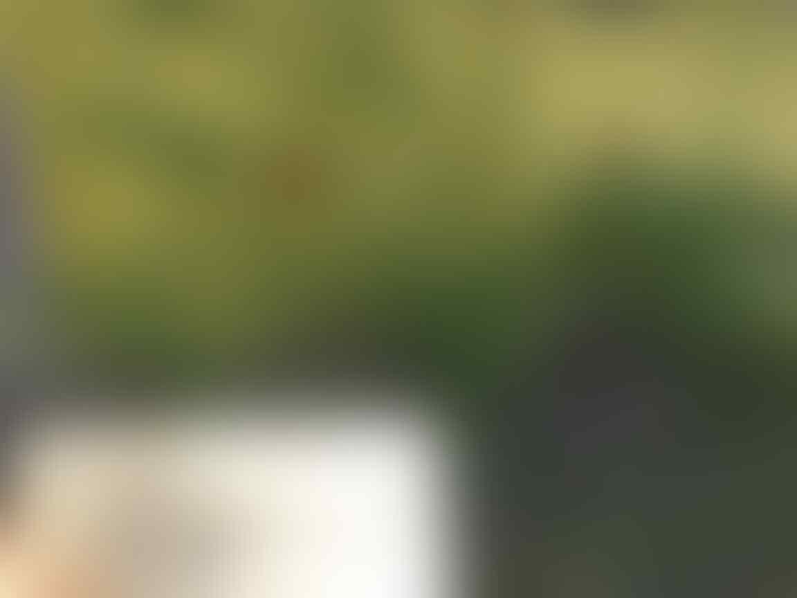 Go-Green Salah Satu Investasi Ala Ane Untuk Kini Dan Nanti, Cekidot!