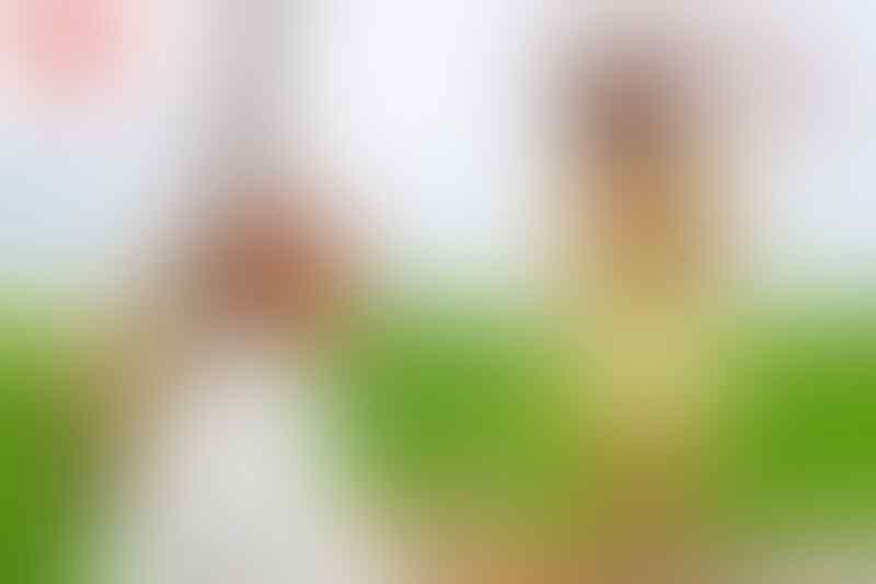 Mantan Bintang AV Kirara Asuka Akan Membuka Klub Bordil di Ginza