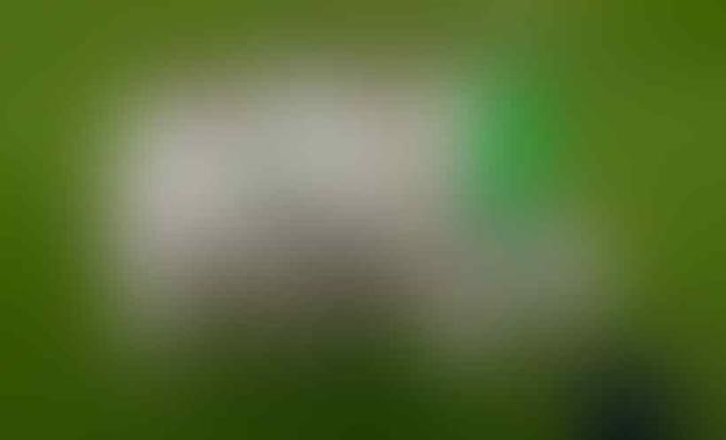Harry Kane, Korban Bursa Transfer atau Ketakutan Gareth Southgate?