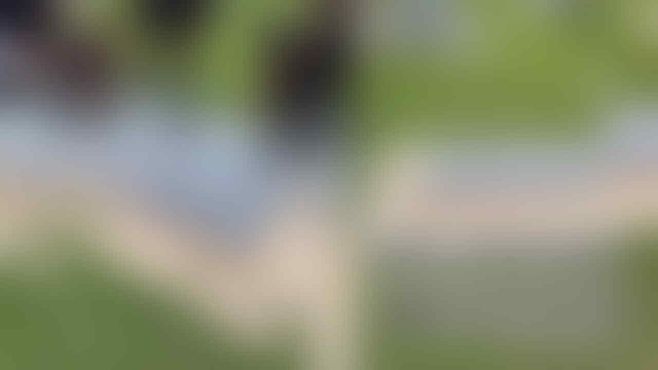 Viral Video Kuburan Dengan Tutup Transparan. Bisa Melihat Mayat Terurai Dong ?