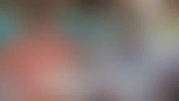 Pakar Ungkap Alasan Pesawat Kepresidenan Idealnya Warna Biru