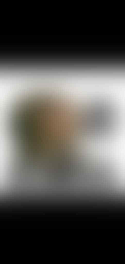 Atlet Voli Pakai Bikini, Anggota DPR: Matikan TV karena Islam Haramkan Tonton Aurat