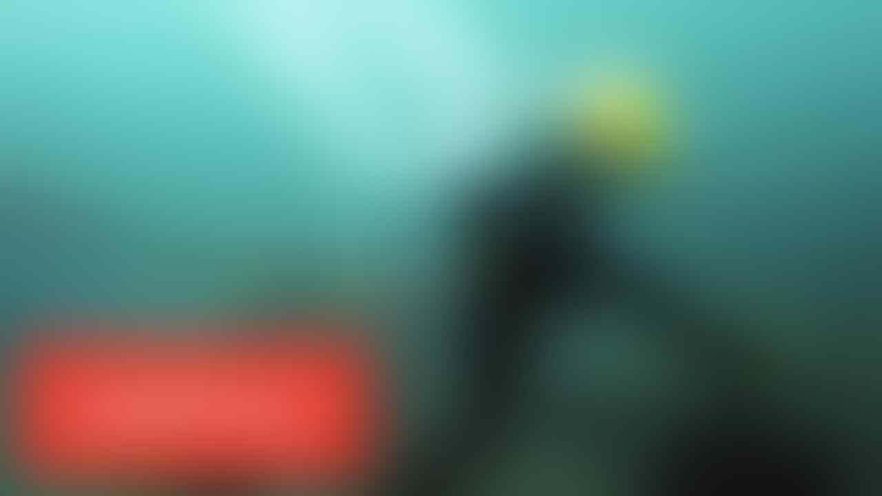 Petugas Indohome Bertaruh Nyawa Dilautan Demi Memperbaiki Jaringan yang Down
