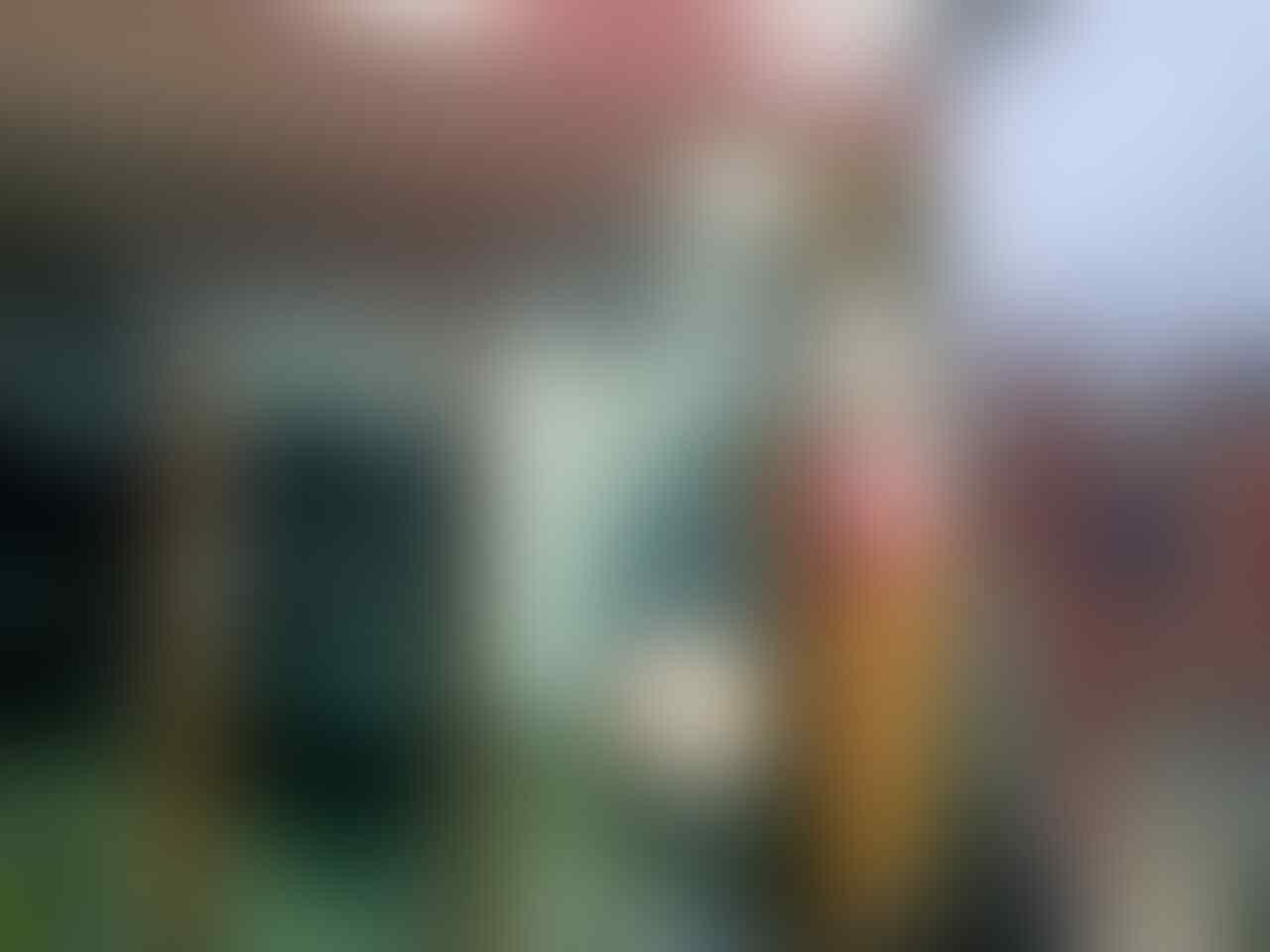 Review Gelato House, Tempat Escape Sejenak dari Teriknya Bekasi