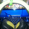 Gaming Headset Razer Electra