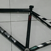 Specialized Langster Track / Fixed / Fixie Frame