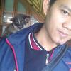 Musang akar / muskar baby bandung